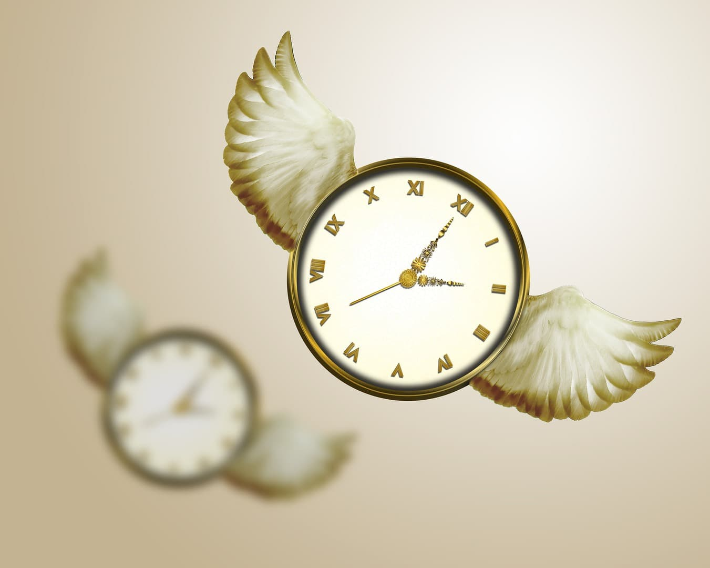 time-flies-